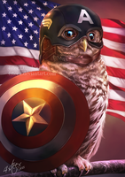 The Owlvengers - Captain Owlmerica by 4steex