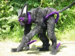 Tenebrae Quadsuit May 2011 by ThoronWild