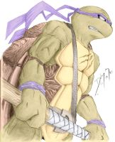 Donatello colored by FireDolphin