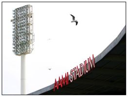 AAMI Stadium by hellion-at