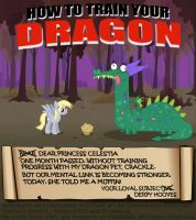 How to train your dragon - Derpy style by INVISIBLEGUY-PONYMAN