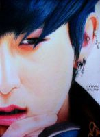 TAO - Colour Pencils by diamondnura