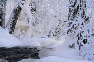 river in the forest by KariLiimatainen