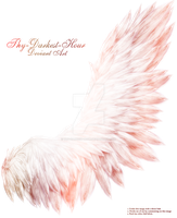 Fluffed Wings 2 - Red Caste by Thy-Darkest-Hour