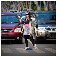 Crossing the Road by lansakit