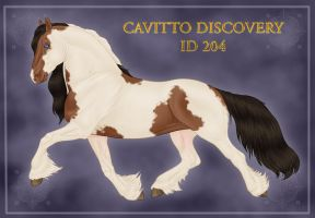 Cavitto Discovery ID 204 by Cariannarz