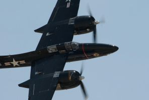 Tigercat by AirshowDave