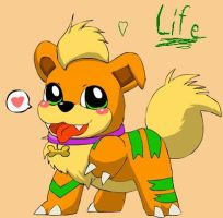 Life The Growlithe by PikaIsCool
