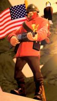 Keeping my land free ::Team Fortress 2:: by guywiththesuitcase