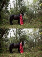 A girl and her horse 4 by magikstock