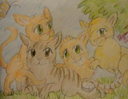 Firestar and Sandstorm: Their kits by Floppaw