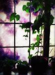 A Fairy's Window 9-1-14  by cocoaberi