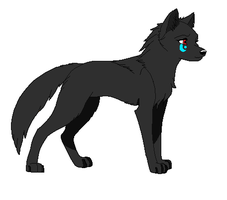 Midnight the wolf by Star-is-the-bomb