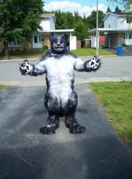 Bleis wolf costume by Bleis