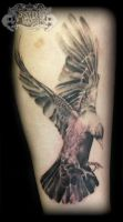 Jackdaw by state-of-art-tattoo