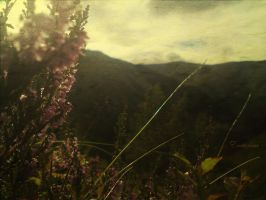 dreaming hills by Ecaterina13