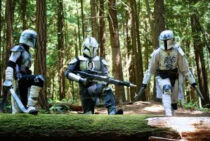 Squad on Endor by burningdreams76