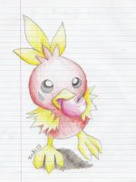 Torchic by spiffychicken