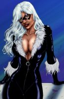 Black Cat by Sheenaiv