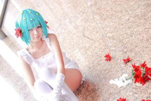 Pokemon - Shaymin by Xeno-Photography