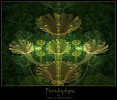 Pteridophyta by French-Chocolaite