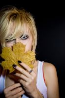 Maple leaf portrait stock by EK-StockPhotos