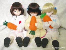 Bunnies love carrots by wawa-station