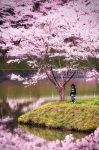 Little Girl surrounded by Sakura by WindyLife