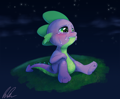 Wishes and Teardrops by C-Puff