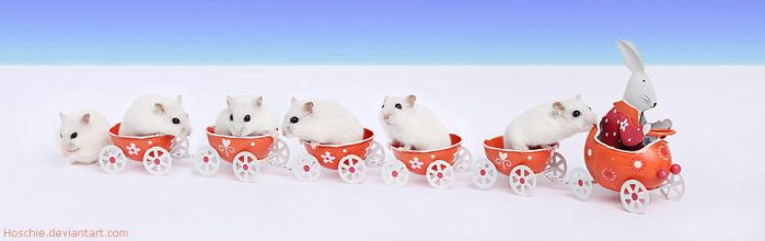 Easter convoy by hoschie