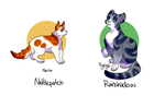 Warrior Cats Me's by Kabachu
