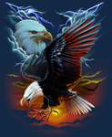 USA EAGLE PATRIOTIC by BROWN73
