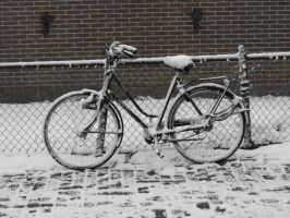 Oh, there is my bike by Trea1969