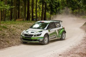 Goodwood 2013: Skoda Fabia S2000 Rally Car by randomlurker