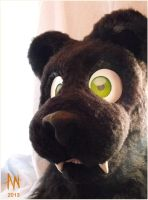 Saber Tooth Panther Head by Adele-Waldrom