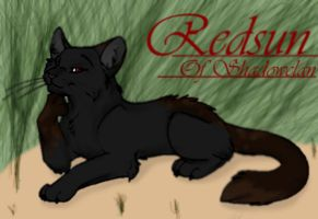 Warriors Cats Clan App: Redsun Shadowclan Warrior by LuluSweetheart