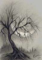 Tree in charcoal - unedited by wyldraven