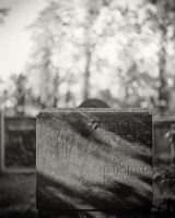 Family Grave 09 by HorstSchmier