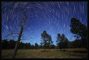 Moonlit Trails by CapturingTheNight