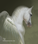 Tribute to Silvern Gleam by Anuden