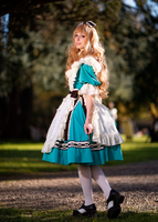Alice in Wonderland ~ Sakizou by Neigeamer