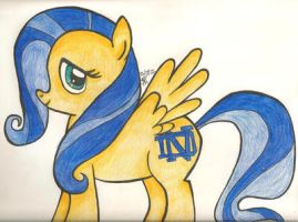 Notre Dame Pony by AquaNature10