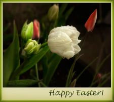 .Happy Easter. by Violet-Kleinert