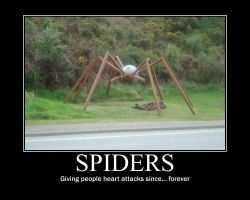 Spider Demotivational by quietlyintheshadows