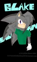gift: Blake the hedgehog by Fusionthebluefoxy28