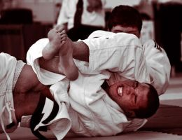 Judo by Jules-bonnot
