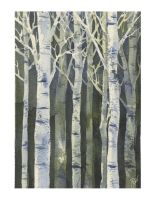 Birches 4 by Jackin