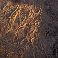 Sandwriting by OlivierAccart
