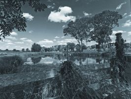 River scene Northamptonshire by davepphotographer