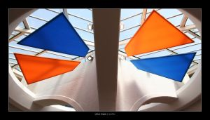 colour shapes by Raymate